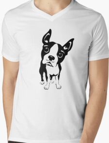 Boston Terrier Dog  Mens V-Neck T-Shirt