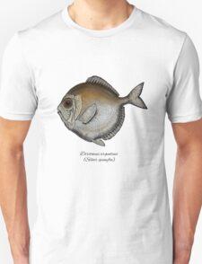 Silver spinyfin Unisex T-Shirt