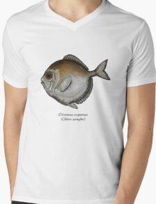 Silver spinyfin Mens V-Neck T-Shirt