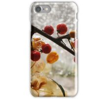 Fire & Ice series 2 iPhone Case/Skin