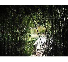 White Bridge Photographic Print