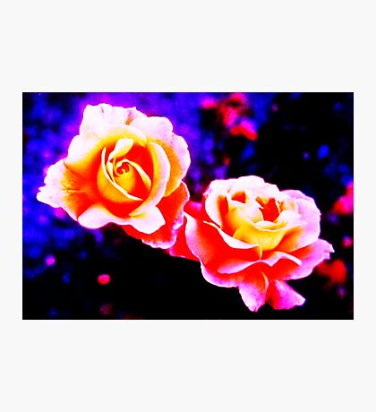 Psychedelic Roses Photographic Print