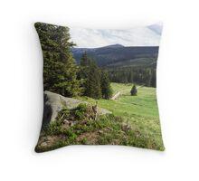 Green Field - Nature Photography Throw Pillow