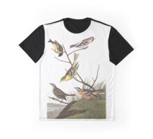 Arkansaw Siskin, Mealy Red-poll, Louisiana Tanager, Townsend's Bunting, Buff-breasted Finch, by John Audubon Graphic T-Shirt