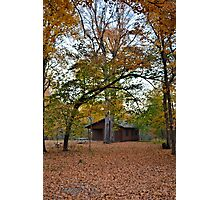 Cabin In The Woods 2 Photographic Print