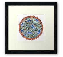 Mandala: Precious Master Of Happiness Framed Print