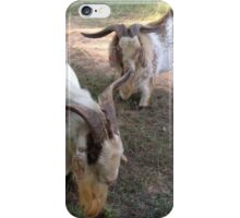 Buck Shot and Gold Rush iPhone Case/Skin