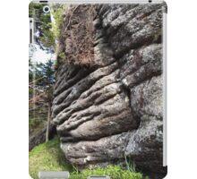Strange Rock - Nature Photography iPad Case/Skin