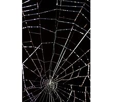 dramatic Intricate spider web on black background  Photographic Print