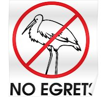 No Egrets Poster