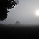 """"""" Cold Misty Luminance """" by Richard Couchman"""