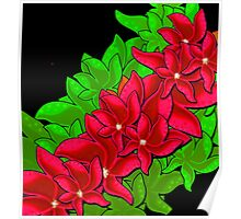 Xmas red flowers Poster