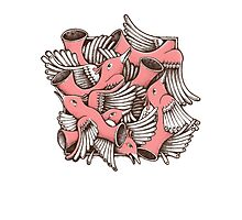 RED BIRDS Photographic Print