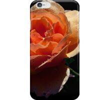 Tangerine! iPhone Case/Skin