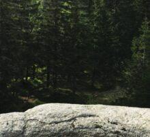 Little Pond - Nature Photography Sticker