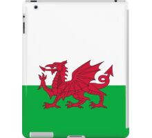 Green and Red Flag of Wales with Dragon iPad Case/Skin
