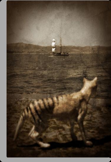 Tasmanian tiger and sailing ship by Richard Morden