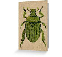 Christmas beetle 03 Greeting Card