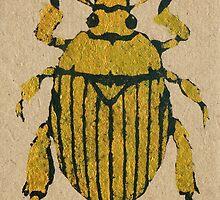 Christmas beetle 04 by Richard Morden