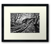 Shadow Land Framed Print