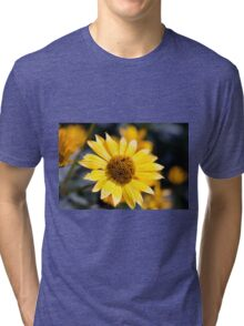Little sun Tri-blend T-Shirt