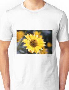 Little sun Unisex T-Shirt