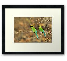 Bee-eater Greens - Mother and Chick of Spring Framed Print