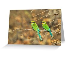 Bee-eater Greens - Mother and Chick of Spring Greeting Card