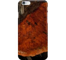 Colour In The Forest iPhone Case/Skin
