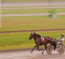 At the trotting course by brijo