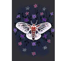 Floral moth Photographic Print