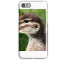 Australian Wood Duck ,  iPhone Case/Skin