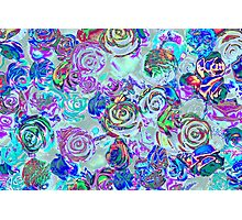 abstract colored roses stones Photographic Print