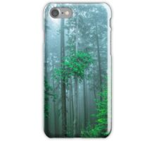TREES IN FOG iPhone Case/Skin