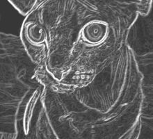 sphynx cat graphic black and white Sticker