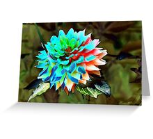 abstract dahlia Greeting Card