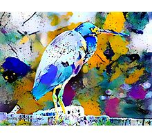 Great Blue Heron Abstract Photographic Print