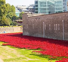 Ceramic poppies at the Tower of London by MisterD