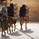 Ethiopia - people, animals and transport by Victor Bezrukov