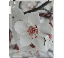 Spring Blossoms #5  iPad Case/Skin