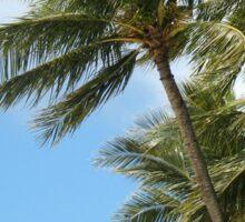 Oahu Palms Sticker