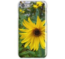yellow flowers of autumn iPhone Case/Skin