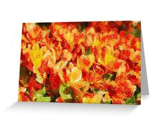 Floral Blossom Composition Greeting Card