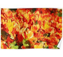 Floral Blossom Composition Poster