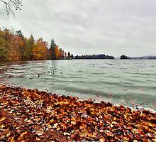 Sörknatten / Baståsen & the Ärr lake by João Figueiredo