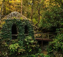 The Hermitage, Tollymore Forest Park by Adrian McGlynn