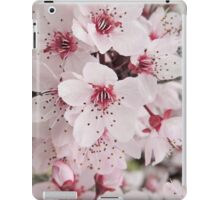 Spring Blossoms #6  iPad Case/Skin