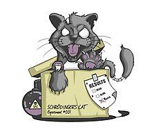 Schrödinger Cat Photographic Print