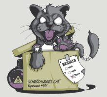 Schrödinger Cat by tomatosoups