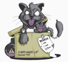 Schrödinger Cat Kids Clothes